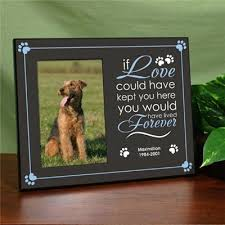 remembrance picture frame pet remembrance frame personalized pet remembrance frame gift
