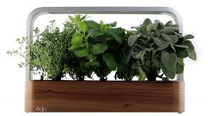 indoor herbs to grow ēdn smallgarden our countertop intelligent indoor garden
