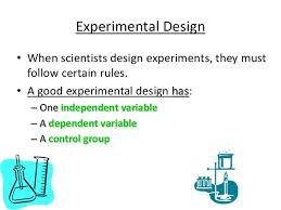 good experimental design the scientific method and experimental design 9th grade biology