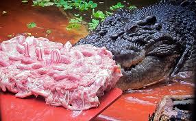 an extraordinary birthday cake for unsual birthday boy bus 404