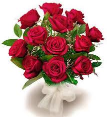 roses flowers imagehostnow