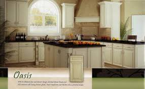 Kitchen Cabinets In Florida Solid Wood Kitchen Cabinets In Crystal River Florida Bathroom