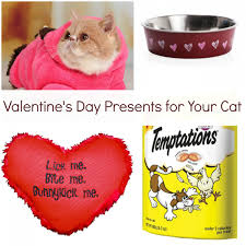 valentines presents for s day presents for your cat heartland soul