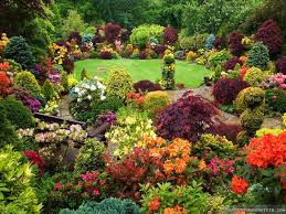 pictures of beautiful gardens with flowers my web value