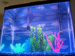aquarium the vastu master key of success and harmony