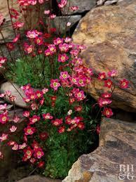 37 simple fresh and beautiful flower garden design ideas