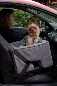 Window Seats For Dogs - amazon com pet gear booster car seat for cats and dogs up to 25