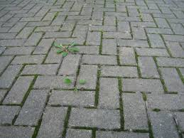 Moss Cleaner For Patios Brick Pavers Canton Plymouth Northville Ann Arbor Patio Patios