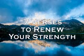 Scripture Verses On Comfort 7 Bible Verses To Renew Your Strength Lighthouse Bible Studies