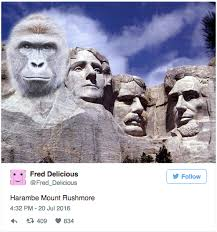 mt rushmore harambe mount rushmore harambe the gorilla know your meme