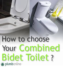 What Is The Meaning Of Bidet 11 Best Combined Bidet Toilet Images On Pinterest Bathroom