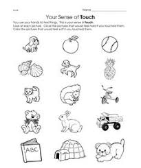 kids can match the images with corresponding senses in this free