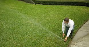 massey services pest control termite inspection u0026 lawn services