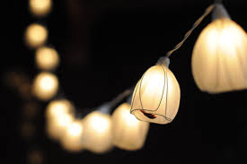 20 white tulip hanging lantern string light wedding lantern