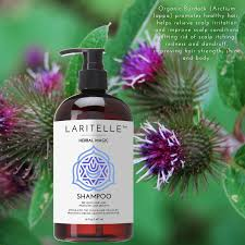 Dandruff And Hair Loss Amazon Com Laritelle Organic Unscented Hypoallergenic Shampoo 16