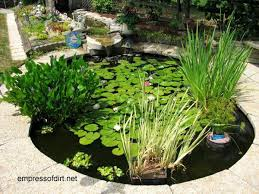 Beautiful Backyard Ideas 17 Beautiful Backyard Pond Ideas For All Budgets Empress Of Dirt