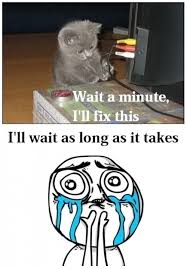 Cuteness Overload Meme - cuteness overload meme annesutu