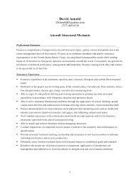 Examples Of Cashier Resumes by Download Resume Structure Haadyaooverbayresort Com