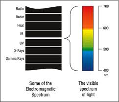 what is tungsten light paglight camera lighting system
