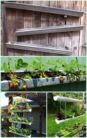 Diy Strawberry Planter by 1000 Ide Tentang Strawberries Garden Di Pinterest Pertamanan