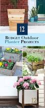 Cheap Tall Planters by Budget Outdoor Planter Projects U2022 The Budget Decorator