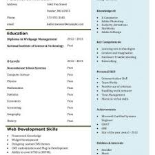 Sample Resume For Software Engineer Experienced by Comely Software Engineer Resume Example Software Developer Resume