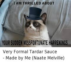 Tardar Sauce Meme - i am thrilled about your sudden missfortunate happenings very formal