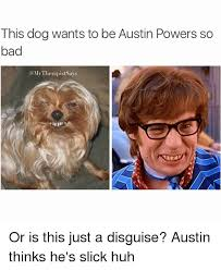 Austin Power Meme - this dog wants to be austin powers so bad my therapistsays or is
