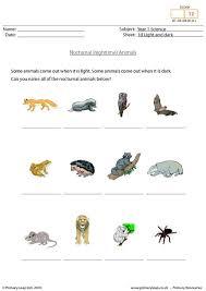 56 best science printable worksheets primaryleap images on