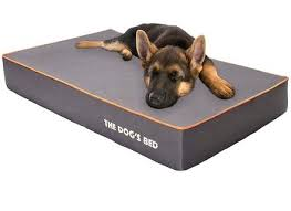 tough dog beds elegant best indestructible dog beds for tough chewers throughout