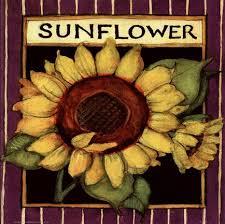 sunflower seed packets sunflower seed packet print by susan winget at