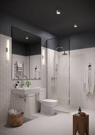 What Kind Of Paint For Bathroom by Painting A Bathroom Ceiling Black 14 With Painting A Bathroom
