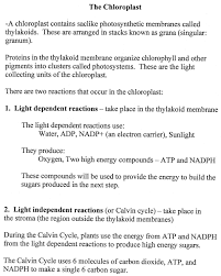the absorption of light by photosynthetic pigments worksheet answers photosynthesis review worksheet answers worksheets for all