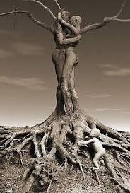 tree feminine family trees and