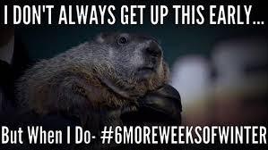 Groundhog Meme - pics groundhog day memes funny photos after punxsutawney phil
