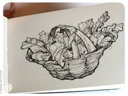 49 best nature sketching images on pinterest nature sketch