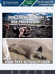 Mud Run Meme - meme mud runs funny sh t pinterest meme and tough mudder