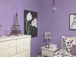 Paris Theme Bedroom Ideas Bedroom View Purple Paris Themed Bedroom Best Home Design