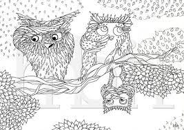 owls colouring pages owl family printable coloring sheet