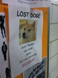 Lost Doge Meme - index of wp content images 2013 01 the best doge meme