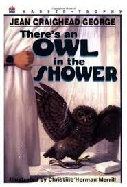 there s an owl in the shower by jean craighead george kirkus reviews
