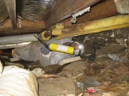 basement crawl space home design