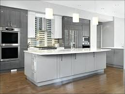refinishing kitchen cabinets without sanding professional painting