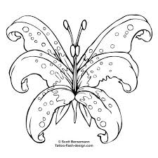 outlines designs butterfly and flower designs