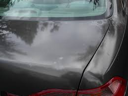 1998 honda accord paint is peeling 12 complaints