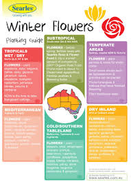 List Of Flowers by Gardening And Planting Calendar Australian Climates Winter