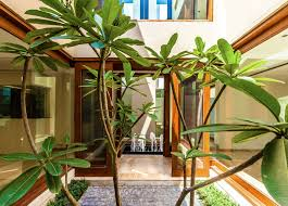 home design interior minimalist courtyard house the plus small
