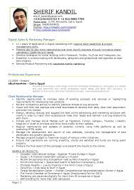 professional marketing resume report wizard introduction sysaid professional sales and
