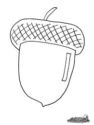 acorn coloring page youtuf com