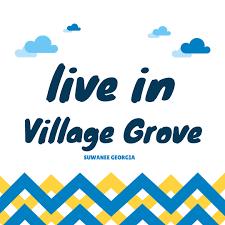 suwanee ga village grove neighborood at home in suwanee
